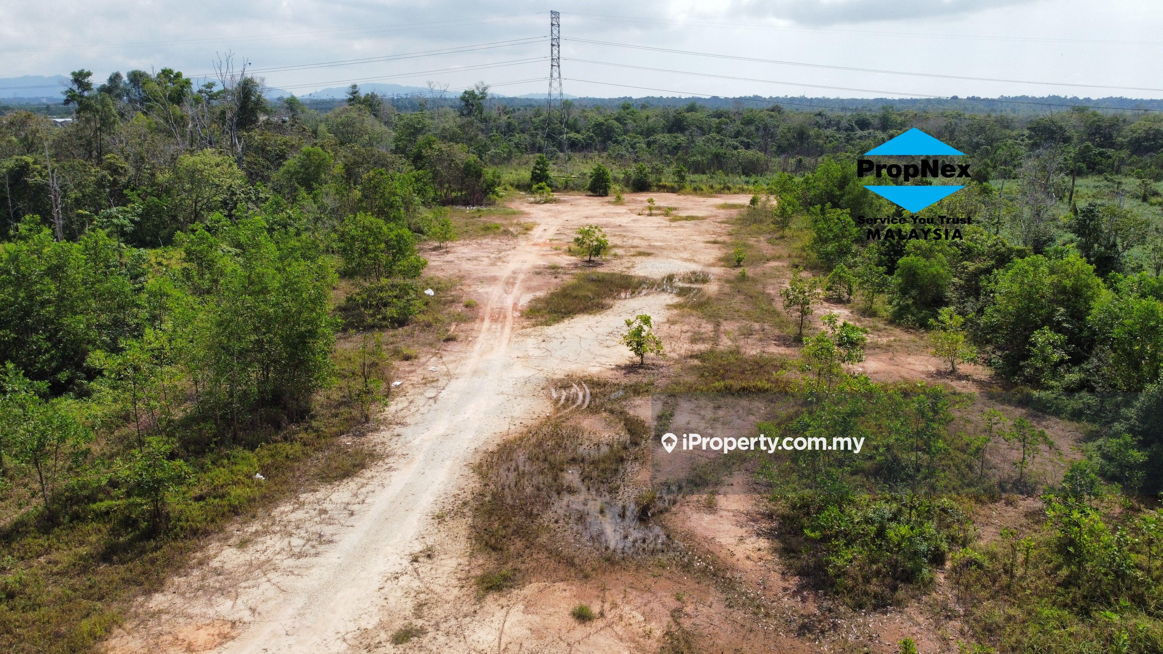 Tanah Pertanian Lot Jalan Kuantan-Pekan, Jalan Kuantan-Pekan, Kuantan