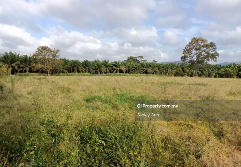 7 acres,Veg Farm,Lake,Kota Tinggi, Kota Tinggi
