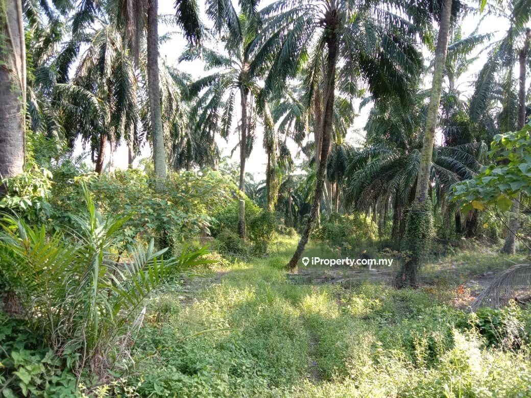 Dengkil , Dengkil 2.06 acres Agriculture Land , Dengkil