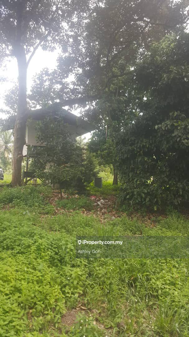 2 acres, Tar road to land, Durian,Ayer Hitam , Ayer Hitam