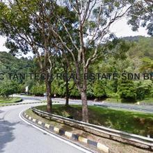 Commercial Land, Bentong, Bentung, Genting Road, Pahang Darul Makmur, Bentong
