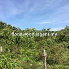 Mukim Kesang, Jasin
