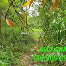 Kampung Desa Aman, Sungai Buloh, Kepong, Sungai Buloh, Kuala Lumpur, Kepong