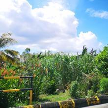 Kampung Paroi Jaya Ampangan Sikamat , Paroi