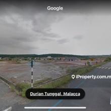 Ambassador Bungalow land (Bumi) , Durian Tunggal