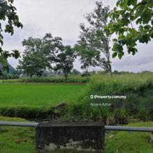 Tanah Jalan Guar Syed Alwi, TANAH GERAN INDIVIDU, Kangar