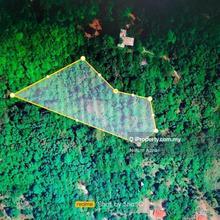 Tanah Bukit Batu Ara, Langkawi, TANAH LOT STATUS PERTANIAN ,LANGKAWI, Pulau Langkawi
