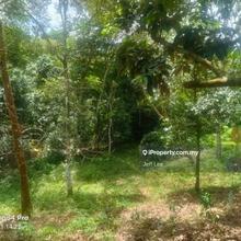 Kuala Krai ,Kuala Balah,Kelantan, Kuala Balah