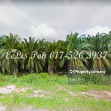 Padang Meha Land, Kulim