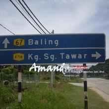 Oil Palm Estate, Kampung Sungai Tawar , Baling