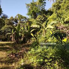 Tanah 14,767 KP di Kg Chekok, Panji, Kota Bharu