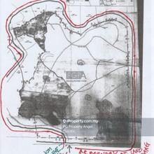 251-acre Freehold Palm Oil Land in Kulim / Baling in Kedah, Kulim