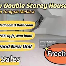 Taman Bukit Tambun Perdana New Freehold House, Durian Tunggal