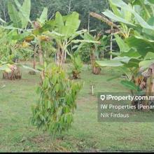 Mukim Padang Kerbau, Kg Rasau, Pendang