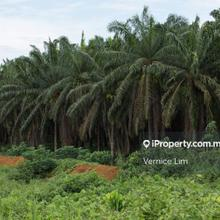 Kulim Heavy Industrial Land For Sale, Kulim Heavy Industrial Land for sale, Kulim