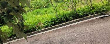 Taman Yarl, Puchong 1