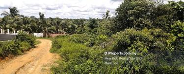 Agriculture Land, Sungai Redan, Ulu Tiram 1
