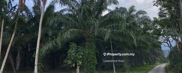 FREEHOLD 3.58 Acre Land Taboh Naning, Alor Gajah 1