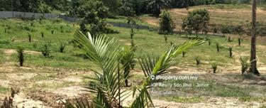 Simpang Renggam Durian Farm 8 acres, Simpang Rengam 1
