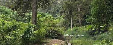 696, Kampung Paya Tokong, Bandar Baharu 1