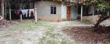 Tanah Pertanian, Jalan Naka - Mukim Tekai, Padang Terap 1
