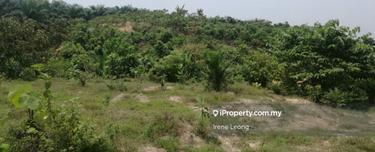 9.163 acres Karak (Lengkong) Oil Palm Land For Sales , Karak 1