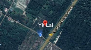 Agricultural Land, Simpang Renggam, Benut, Ayer Hitam, Rengam 1