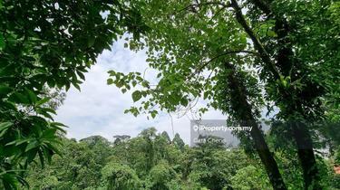 Taman Duta 1