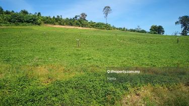 Agricultural land, Karak, Bentong 1