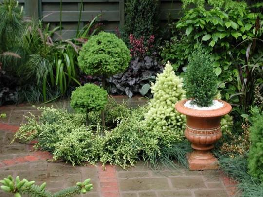 small-home-garden-design-with-brigt-colors