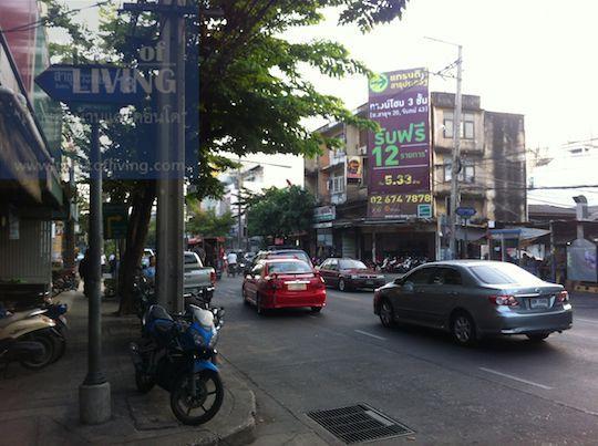 Flora Marigold สาธุประดิษฐ์ - ถนนใหญ่
