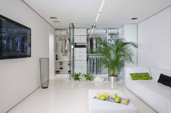 modern-minimalist-small-apartment-living-room-with-indoor-garden-5