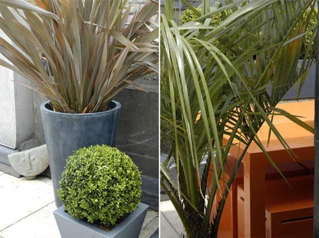 rooftop-garden-ideas3