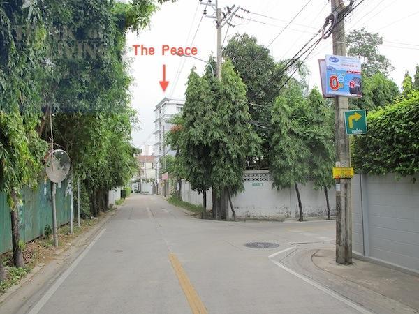 The Peace 23