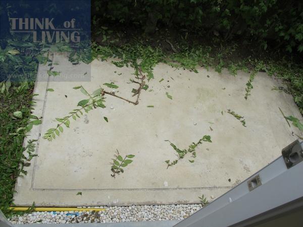 The Plant พระราม 5 197