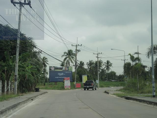 Location Panari 31