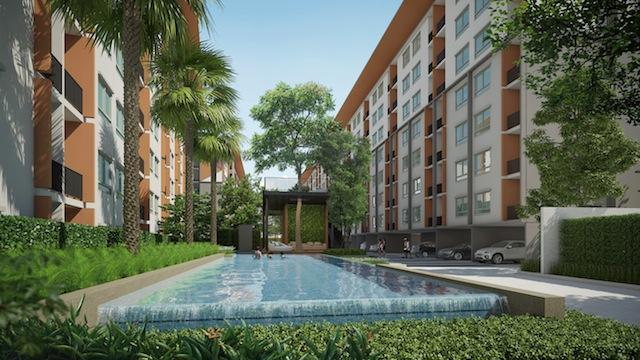 pool view  copy
