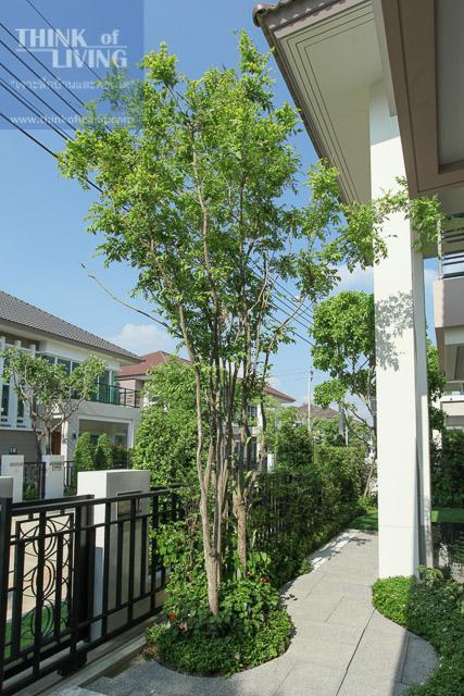 Bangkok Boulevard ราชพฤกษ์-พระราม 5-260