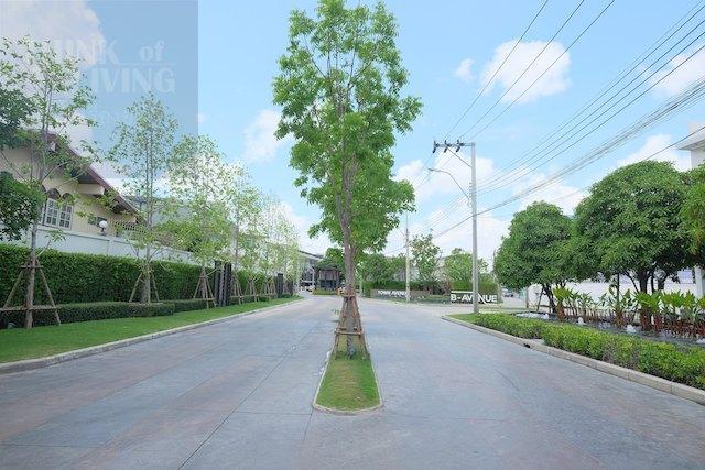 Town Avenue Cocos 20