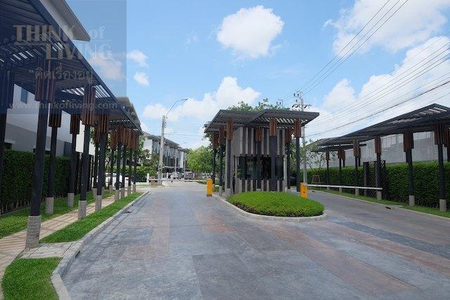Town Avenue Cocos 23