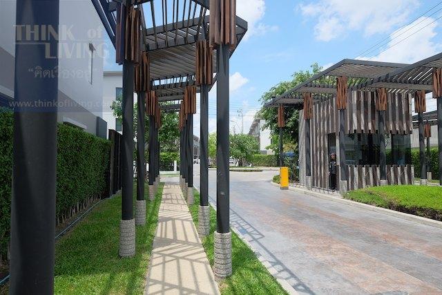 Town Avenue Cocos 24