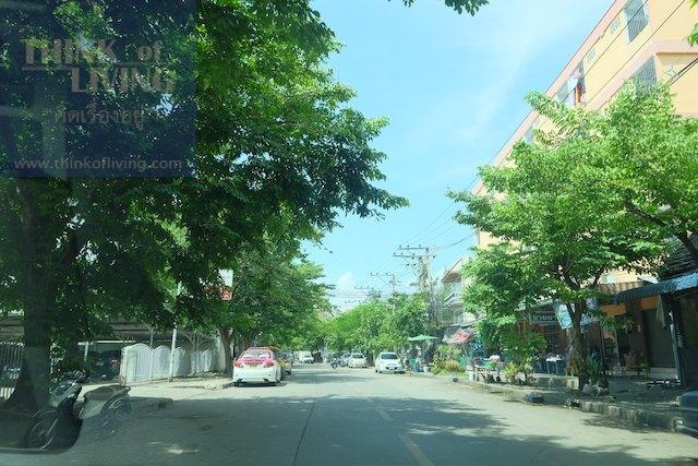 Town Avenue Forte 1