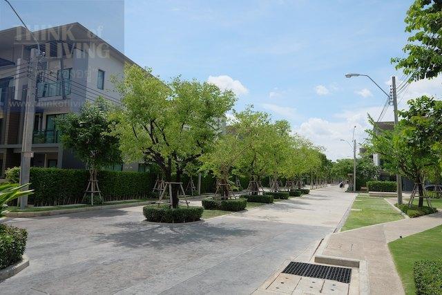 Town Avenue Forte 14