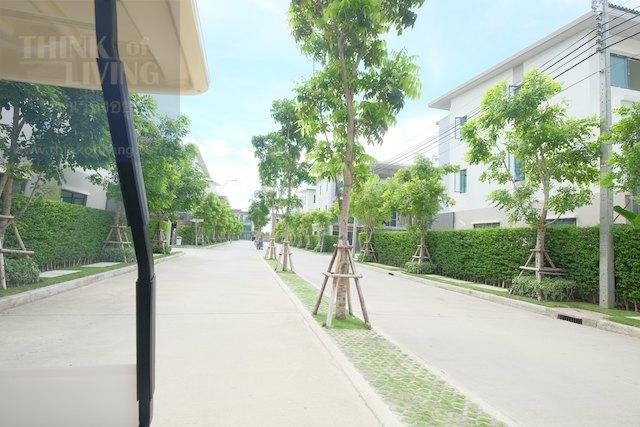 Town Avenue Forte 74