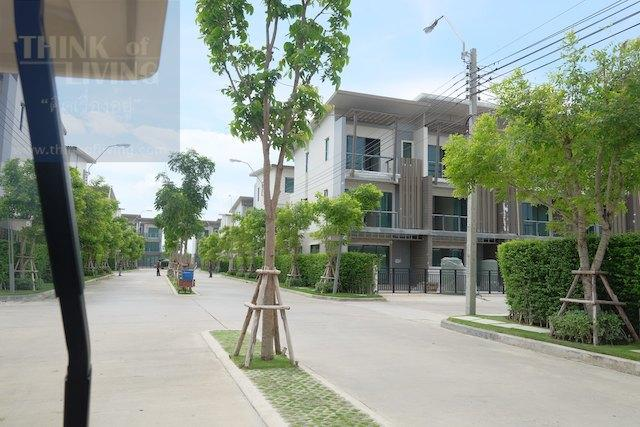 Town Avenue Forte 75