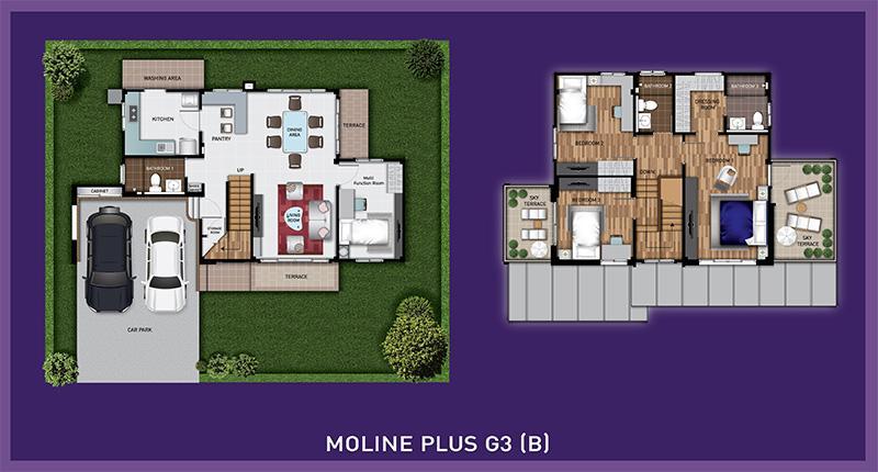 Moline Plus Plan